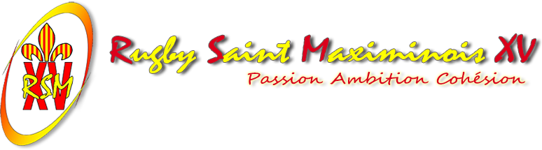 logo rsmxv